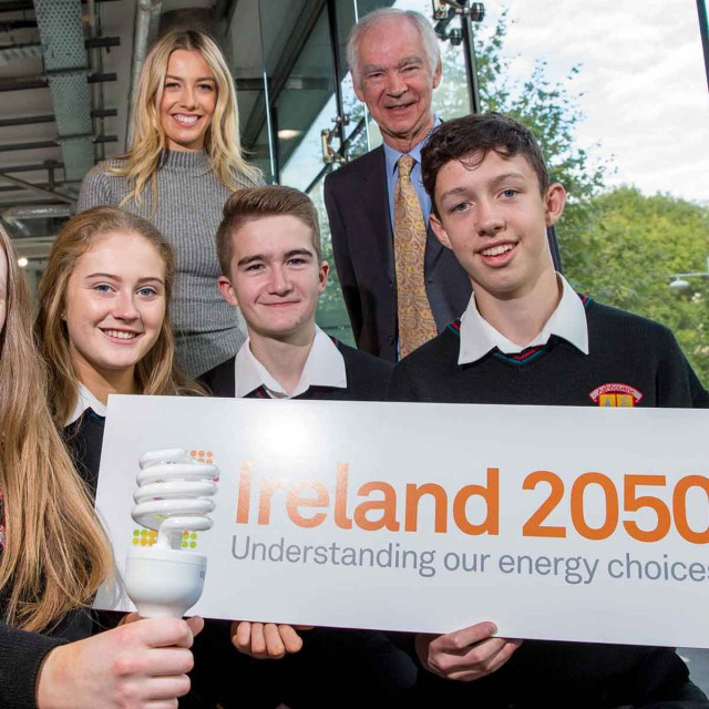 Ireland 2050 website
