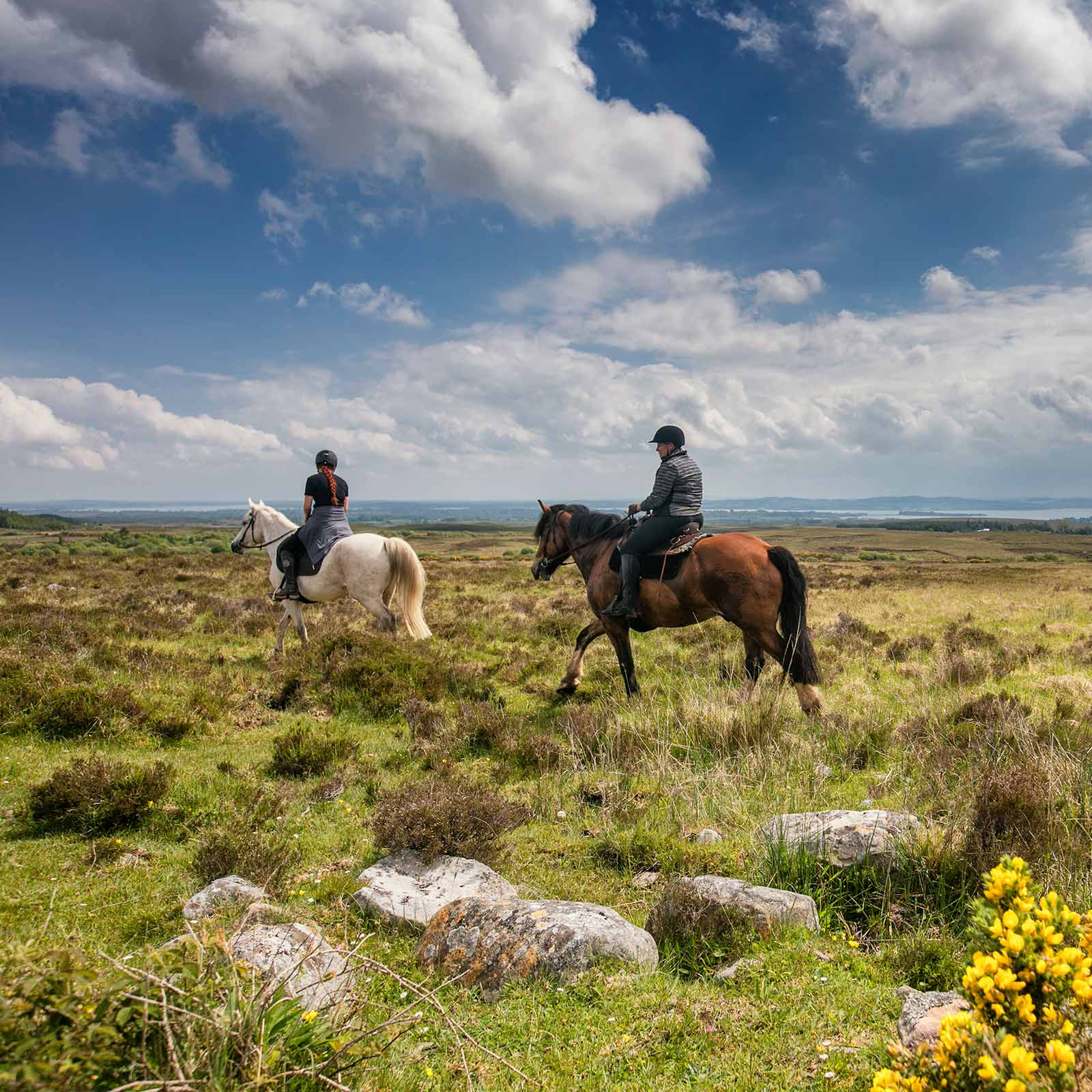 Two riders in a meadow in County Clare